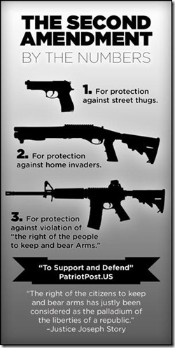 2ND AMENDMENT by the numbers