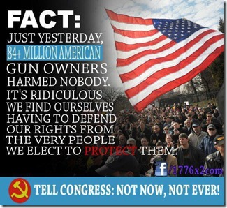 841 MILLION GUN OWNERS