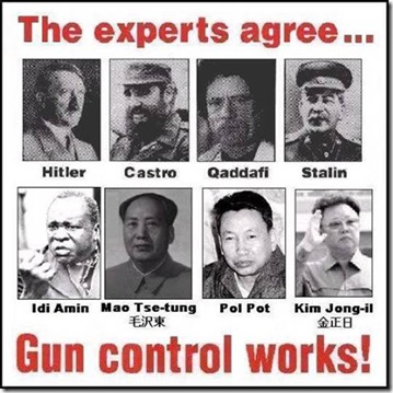 Experts agree gun control works